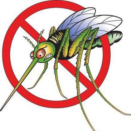 Как не допустить насекомых в квартиру?