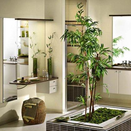 Как выбрать растение в квартиру?