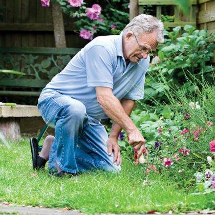 Как стать садоводом?