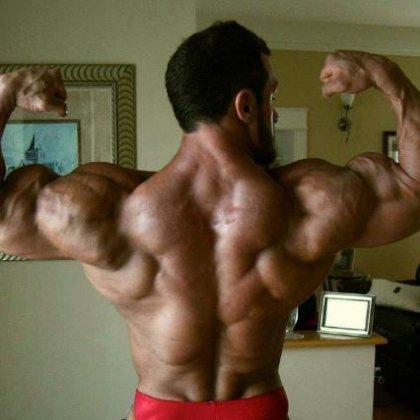 Как качать спинные мышцы?