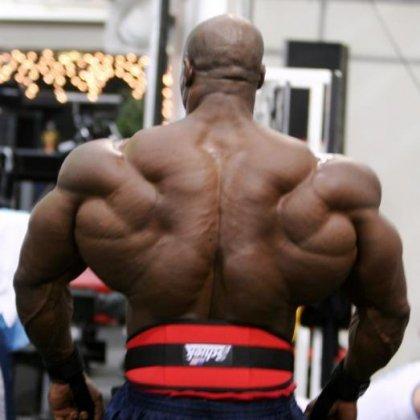 Как быстро накачать мышцы спины: базовые принципы