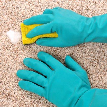 как правильно почистить организм от паразитов