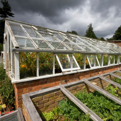 Как выращивать овощи в теплице?