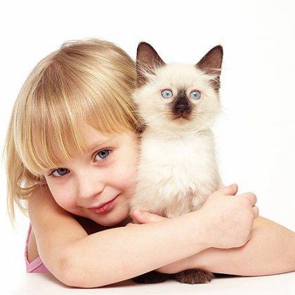 Как научить ребенка любить животных?