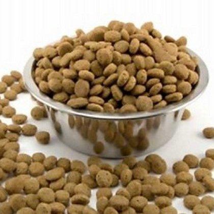 Как кормить собаку сухим кормом?