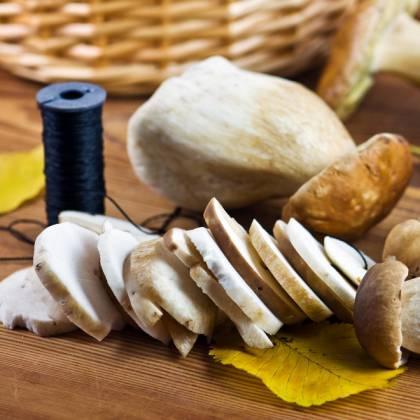 Как сушить грибы: рецепт сушки грибов