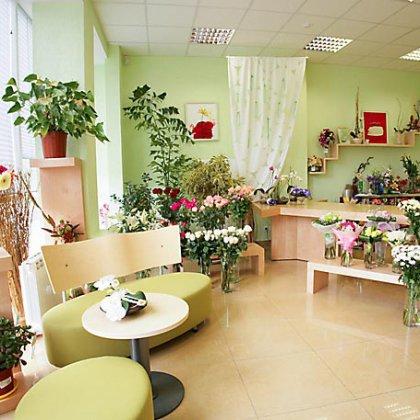 Квартира в комнатных цветах