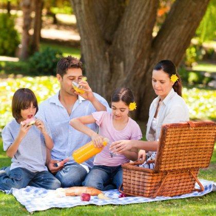 Как устроить пикник