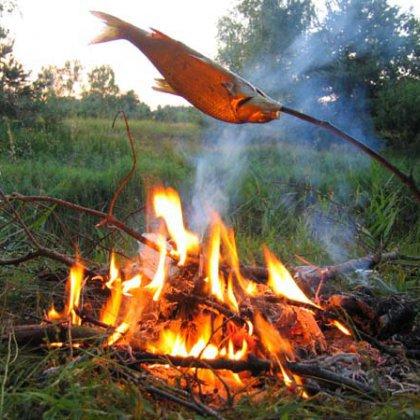 пожарить рыбу на рыбалке