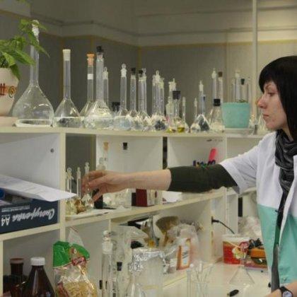 Как сделать пенициллин: процесс изготовления