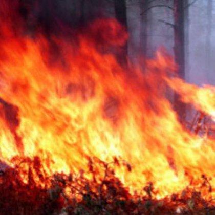 Как обращаться с огнем: важнейшие правила