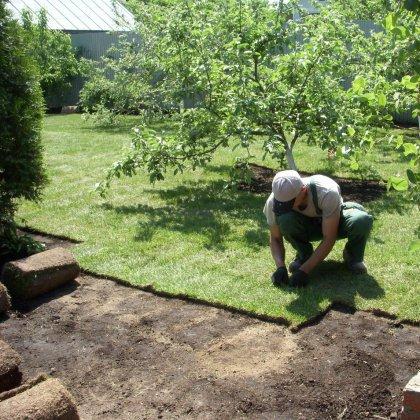 Как укладывать рулонную газонную траву?