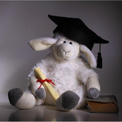 поздравить с защитой диплома  Как поздравить с защитой диплома