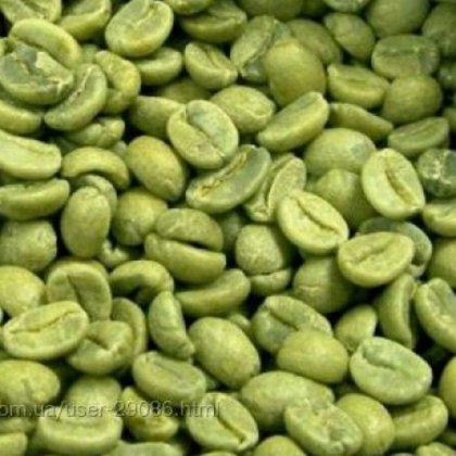 Почему стоит купить зеленый кофе для похудения в Алматы?