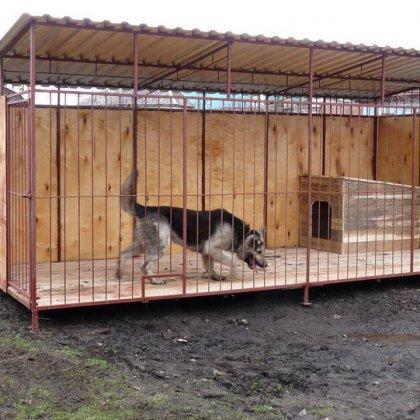 Как сделать вольер для собаки и что для этого понадобится?