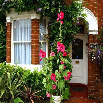 Как облагородить палисадник перед домом?