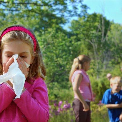 как лечить аллергию на белок
