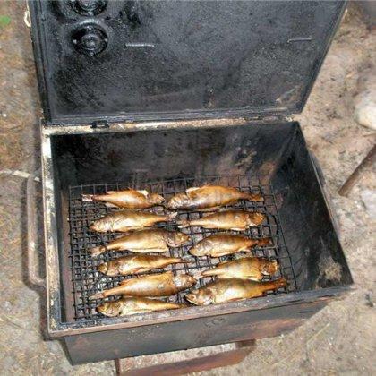 Как коптить рыбу на даче?