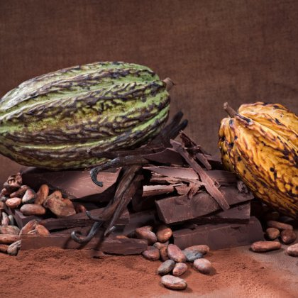 Как появился шоколад?