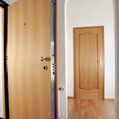 Разбираемся, как убрать скрип дверей