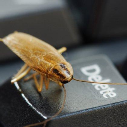 Избавиться от тараканов навсегда