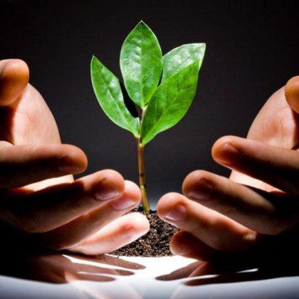 Cоветы, как сберечь природу