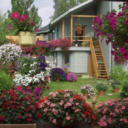 Как вырастить сад ?