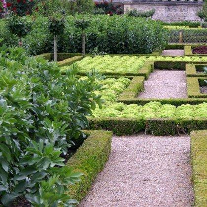 Как удобрить огород: лучшие удобрения