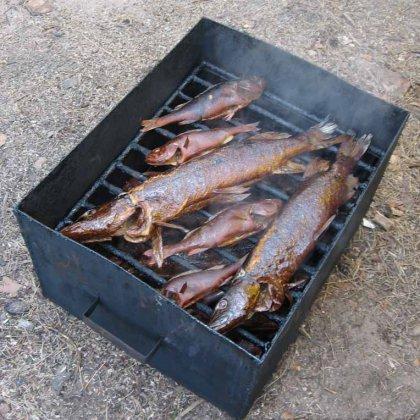 Как коптить рыбу дома?