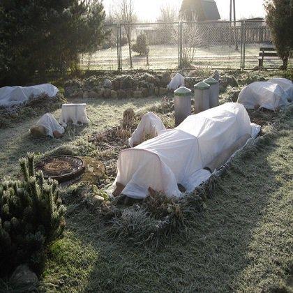 Как сохранить газон зимой?