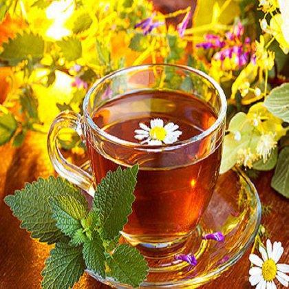 Как заваривать чай с мелиссой?