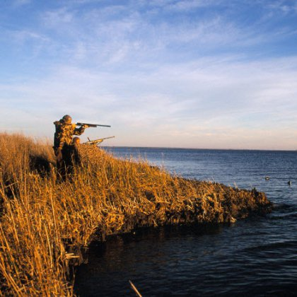 Где узнать новые законы об охоте?