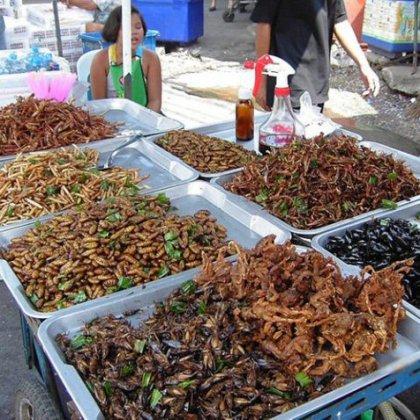 Для тех, кто хочет знать как едят насекомых!
