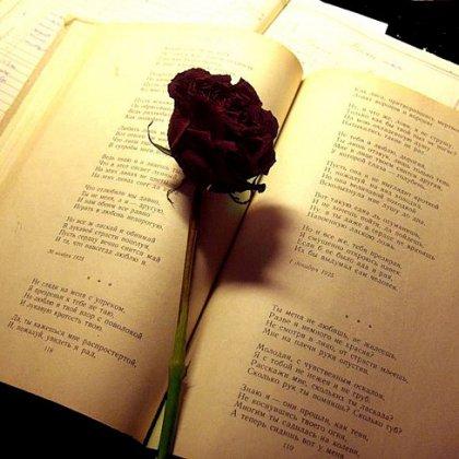 Как своими стихотворениями можно поделиться с другими?