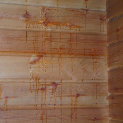 баня из соснового бруса смола течет что делать