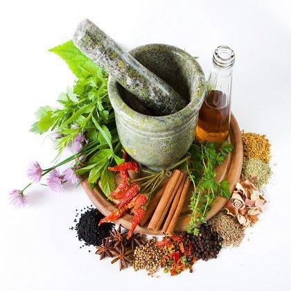 Как найти лекарственные растения?