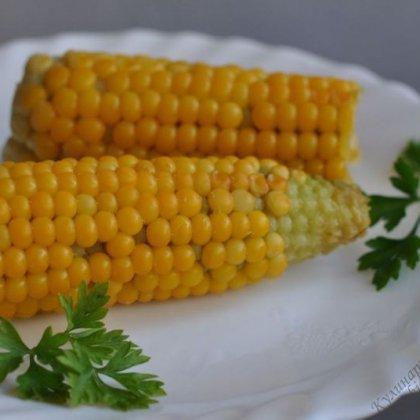 Как лучше, правильно варить свежую кукурузу