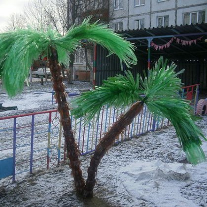 Как сделать пальму своими руками для дома?