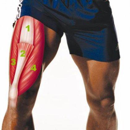 Как подкачать мышцы ног?