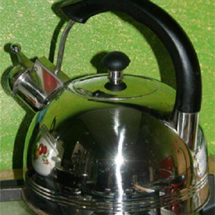 Как очистить чайник из нержавейки?
