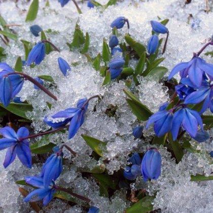 В каком месяце наступает весна?