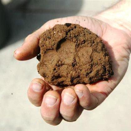 Как хранить глину?